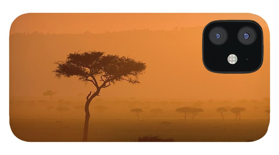 Tranquility iPhone 12 Case featuring the photograph Acacia Tree At Sunset, Masai Mara by James Hager / Robertharding