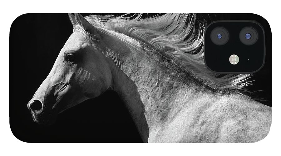 Horse IPhone 12 Case featuring the photograph Arab Stallion by Photographs By Maria Itina