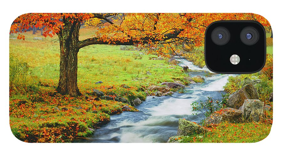 Scenics IPhone 12 Case featuring the photograph Autumn In Vermont G by Ron thomas