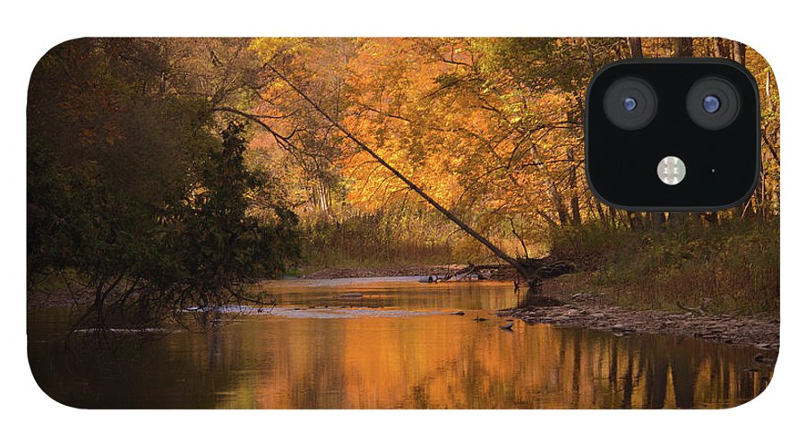 Outdoors IPhone 12 Case featuring the photograph Autumn Trees by Lynda Murtha