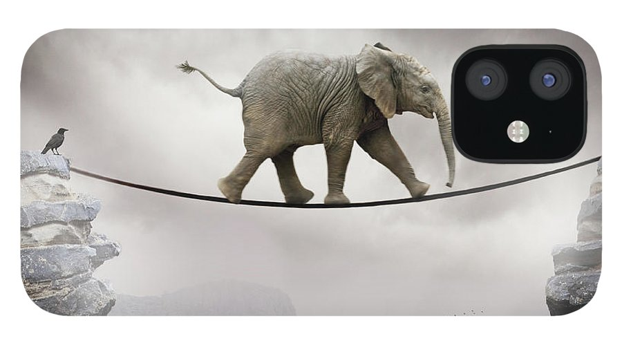 Animal Themes IPhone 12 Case featuring the photograph Baby Elephant by By Sigi Kolbe