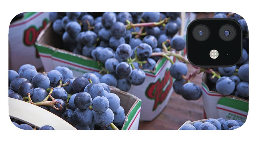 Toronto iPhone 12 Case featuring the photograph Baskets Of Grapes by Mary Smyth