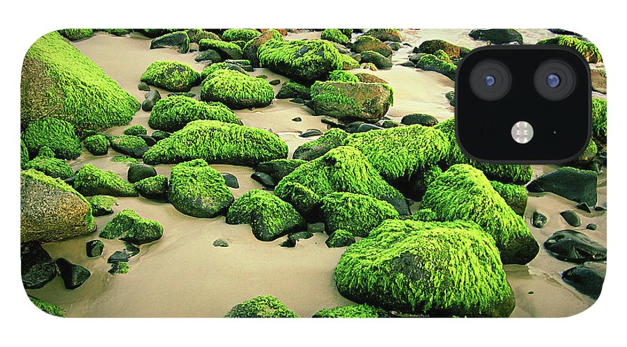 Tranquility IPhone 12 Case featuring the photograph Beach Rocks Covered With Seaweed by Andre Bernardo