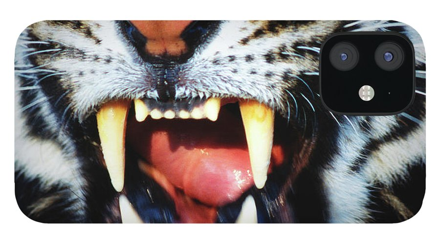 Snarling iPhone 12 Case featuring the photograph Bengal Tiger Panthera Tigris Tigris by Mike Hill