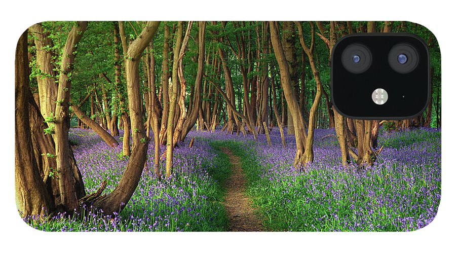 Tranquility IPhone 12 Case featuring the photograph Bluebells In Sussex by Photography By Sam C Moore