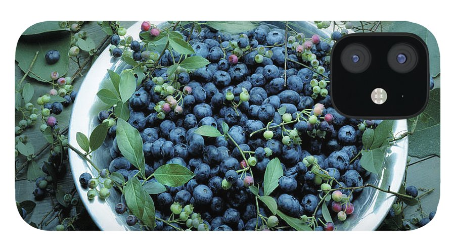 Crockery iPhone 12 Case featuring the photograph Bowl Of Blueberries by Atu Images