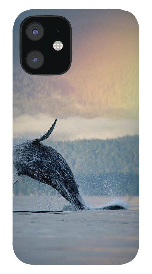 Animal Themes IPhone 12 Case featuring the photograph Breaching Humpback Whale And Rainbow by Paul Souders