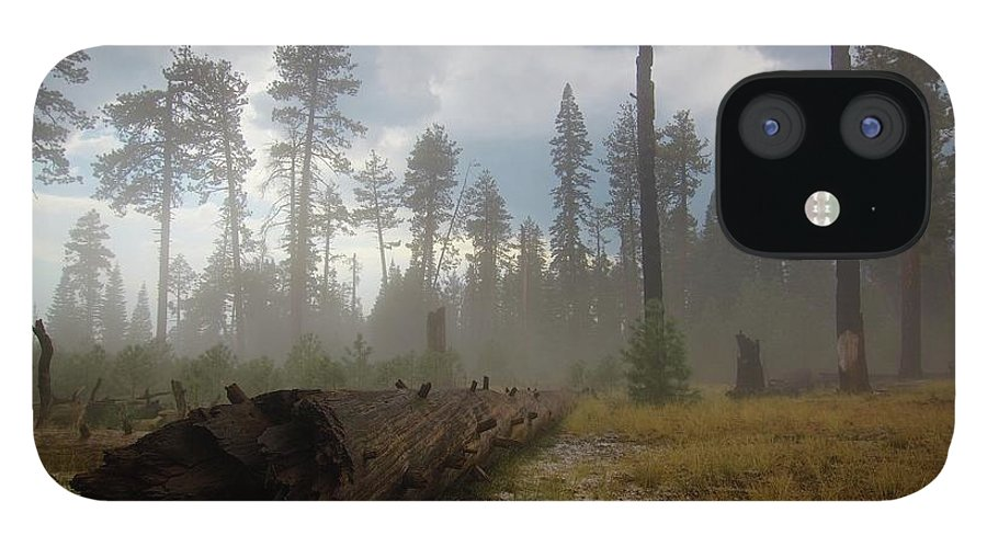 Burnt IPhone 12 Case featuring the photograph Burned Trees At Lassen Volcanic by Victor De Souza