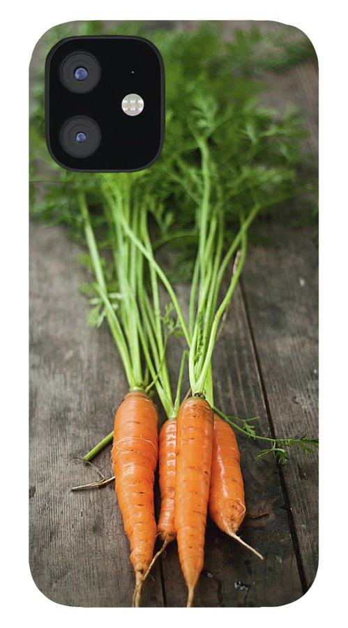 Bulgaria IPhone 12 Case featuring the photograph Carrot by Kemi H Photography