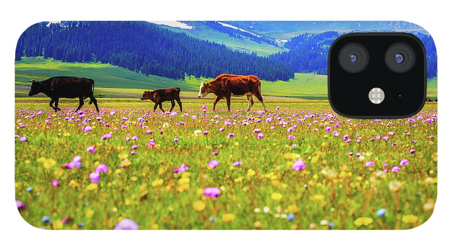 Tranquility IPhone 12 Case featuring the photograph Cattle Walking In Grassland by Feng Wei Photography