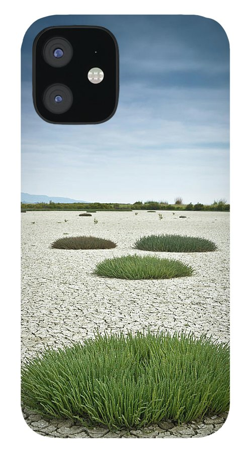 Grass IPhone 12 Case featuring the photograph Clumps Of Grass Growing Through Cracked by David Duchemin / Design Pics