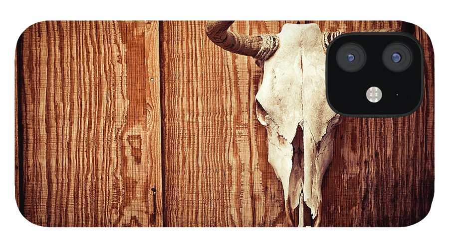 Animal Skull IPhone 12 Case featuring the photograph Cow Skull by Thepalmer