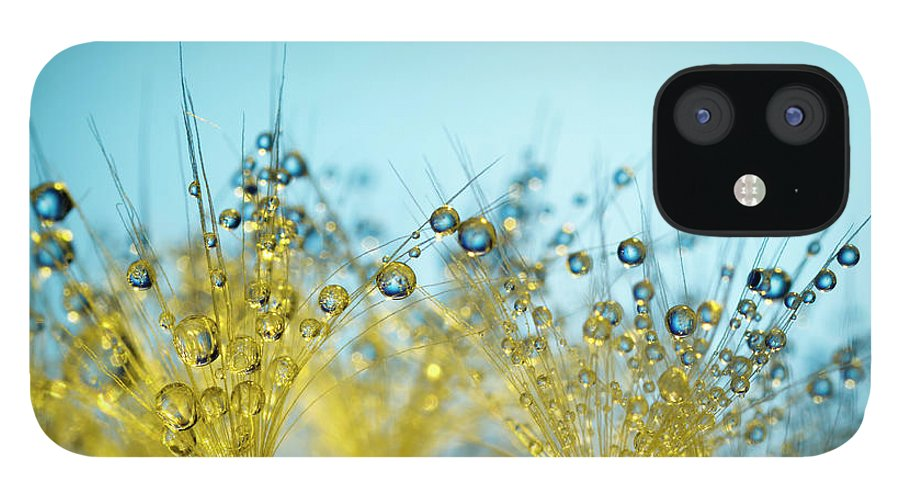 Yellow IPhone 12 Case featuring the photograph Dandelion And Dew - Gold Abstract Macro by Thomasvogel