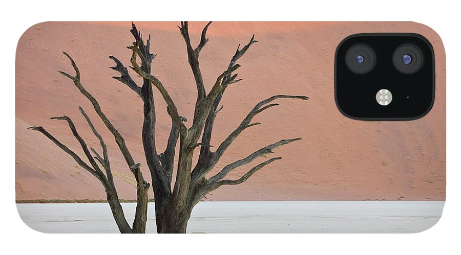Scenics IPhone 12 Case featuring the photograph Dead Vlei Sossusvlei Africa Namibia by Thorsten Milse / Robertharding
