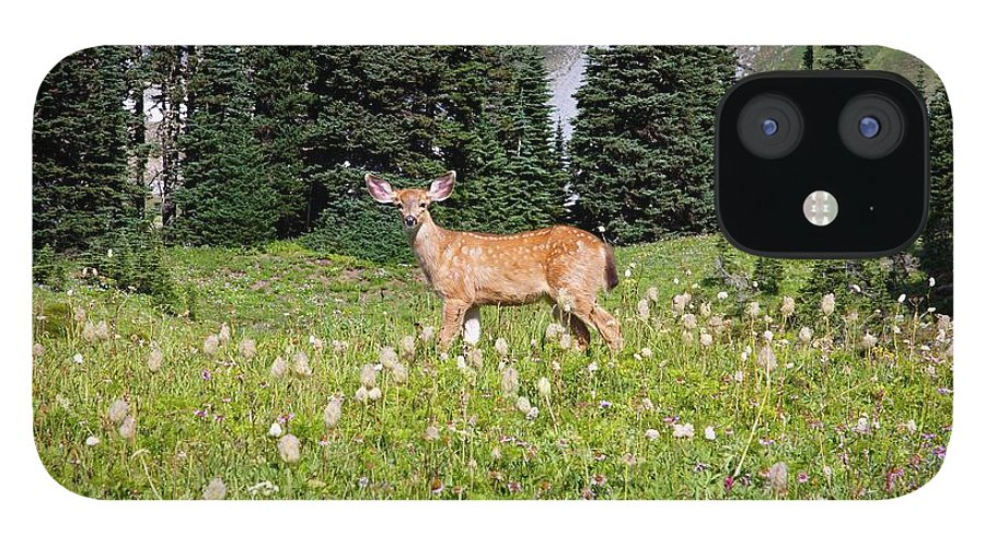 Alertness IPhone 12 Case featuring the photograph Deer Cervidae In Paradise Park In Mt by Design Pics / Craig Tuttle
