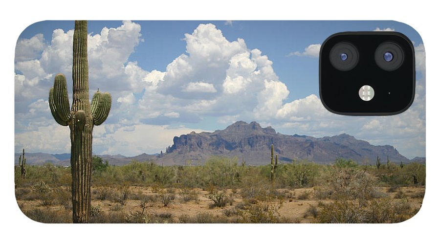 Saguaro Cactus IPhone 12 Case featuring the photograph Desert Landscape by Vlynder