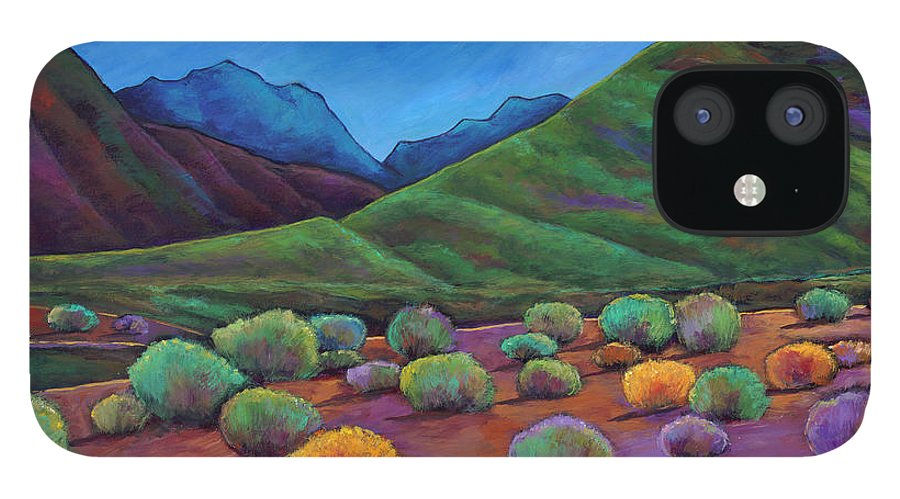Arizona IPhone 12 Case featuring the painting Desert Valley by Johnathan Harris