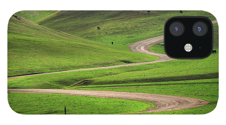 Tranquility IPhone 12 Case featuring the photograph Dirt Road Through Green Hills by Mitch Diamond
