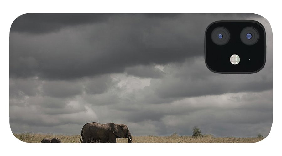Kenya IPhone 12 Case featuring the photograph Elephant Under Cloudy Sky by Buena Vista Images