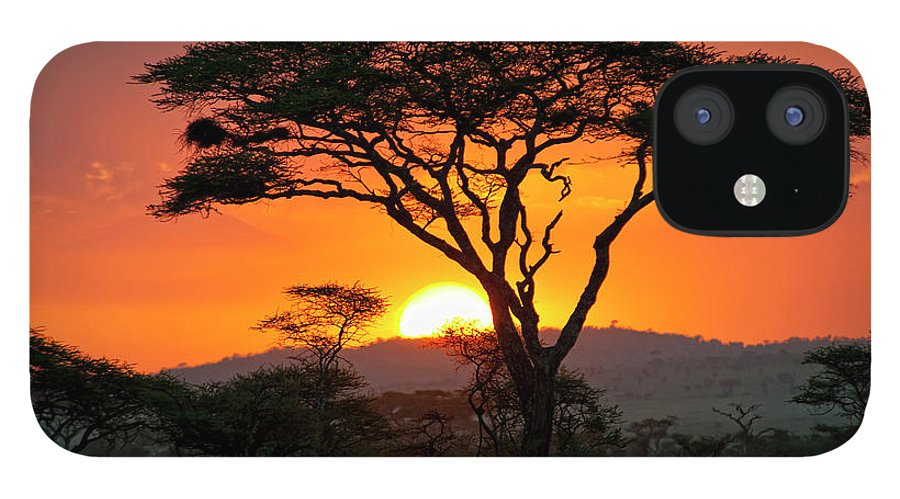 Scenics IPhone 12 Case featuring the photograph End Of A Safari-day In The Serengeti by Guenterguni