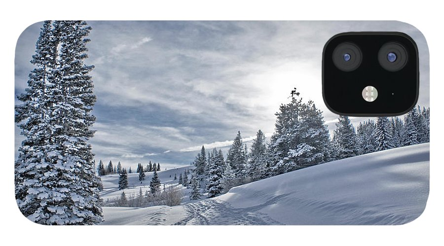 Shadow IPhone 12 Case featuring the photograph Escape From Beaver Creek by Rauch Jonathan Photographies
