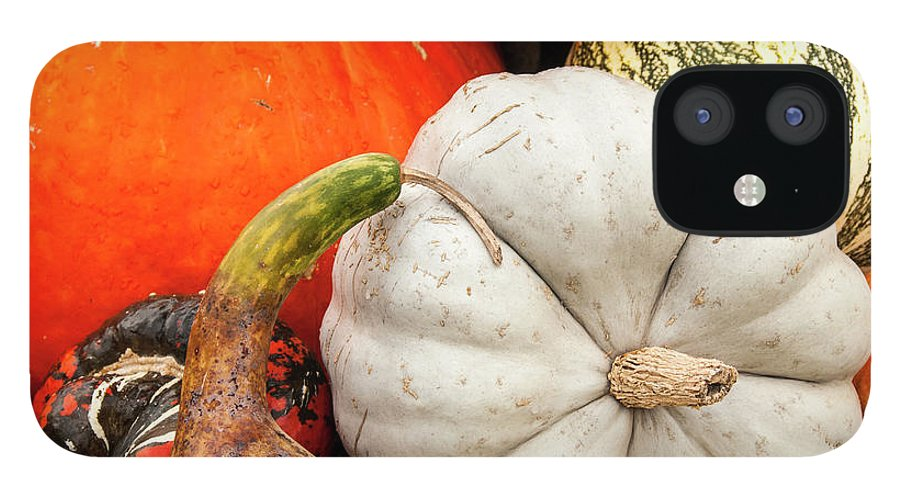 Season IPhone 12 Case featuring the photograph Fall Season Squash And Pumpkins by M Timothy O'keefe
