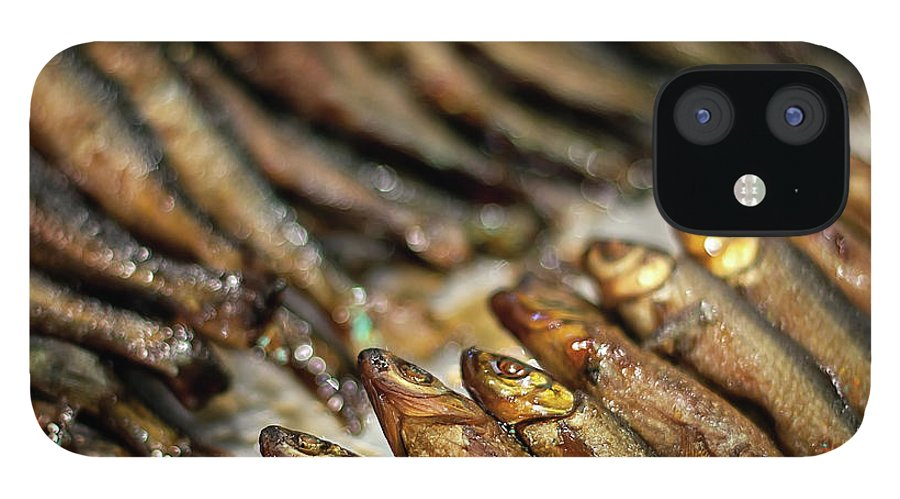 Retail IPhone 12 Case featuring the photograph Fish by David Panevin Photography