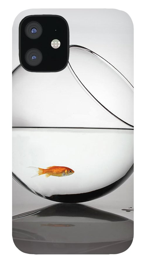 White Background iPhone 12 Case featuring the photograph Fish In Fish Bowl Stressed In Danger by Paul Strowger