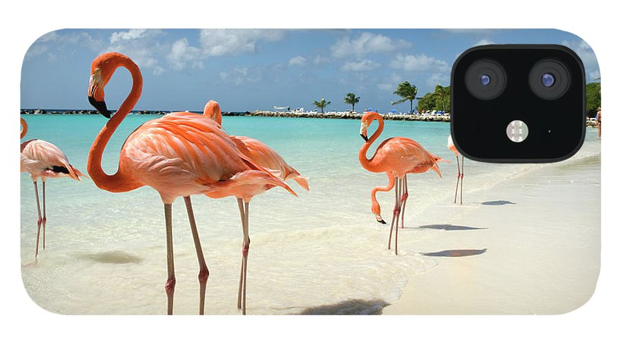 Shadow IPhone 12 Case featuring the photograph Flamingos On The Beach by Vanwyckexpress
