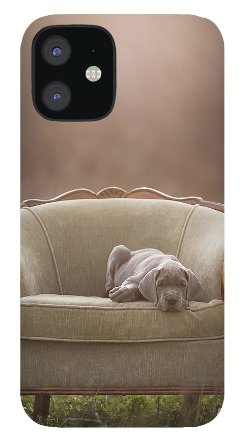 Sofa IPhone 12 Case featuring the photograph Floyd by Mike Bons