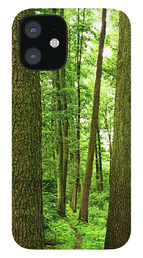 Scenics IPhone 12 Case featuring the photograph Footpath Between The Trees by Tomchat
