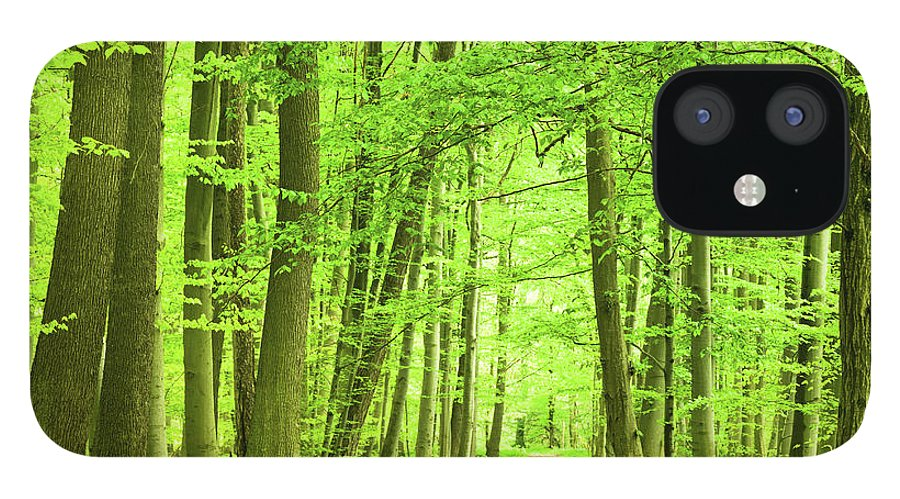Curve IPhone 12 Case featuring the photograph Forest Path by Nikada