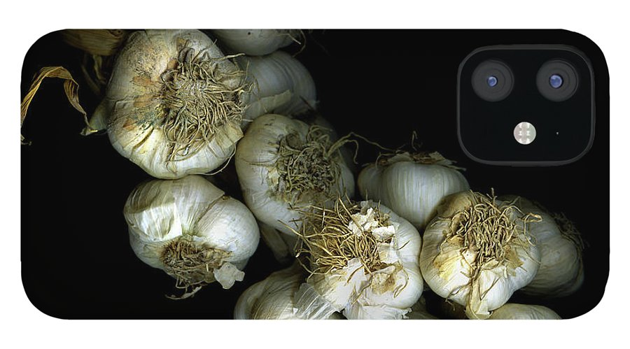 Black Background IPhone 12 Case featuring the photograph French Garlic by Photograph By Magda Indigo