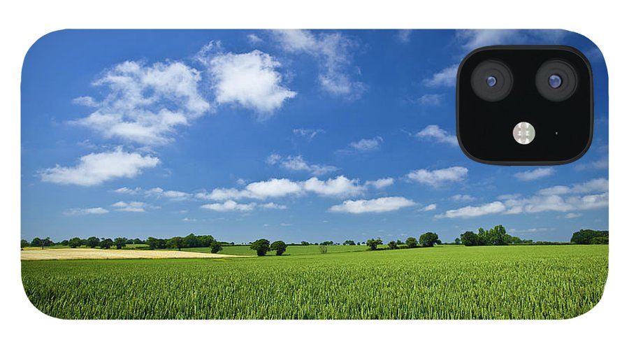 Environmental Conservation IPhone 12 Case featuring the photograph Fresh Air. Blue Skies Over Green Wheat by Alvinburrows