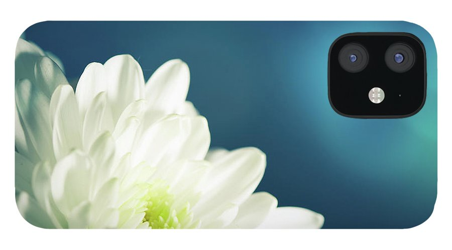Easter IPhone 12 Case featuring the photograph Gerbera by Jeja
