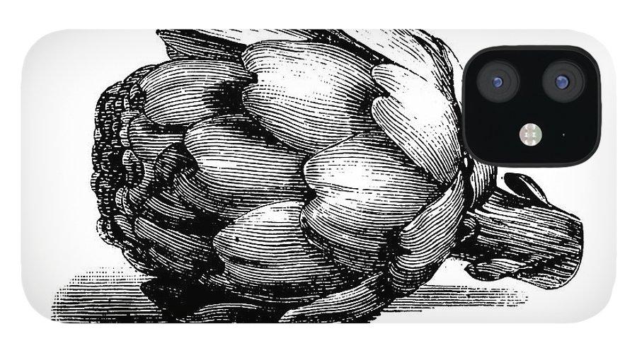 Italian Food IPhone 12 Case featuring the digital art Globe Artichoke   Antique Culinary by Nicoolay