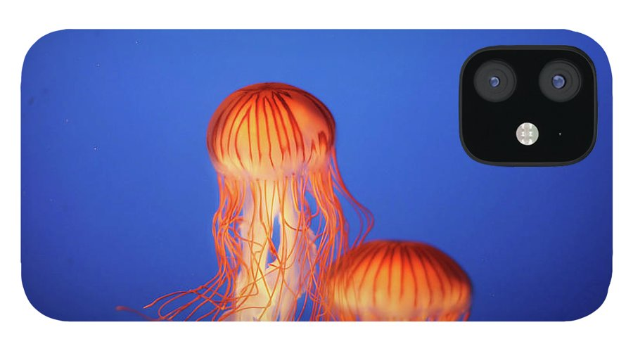 Underwater IPhone 12 Case featuring the photograph Glowing Jellyfish Under Water by Indy Randhawa