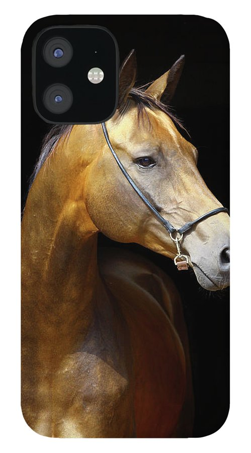 Horse IPhone 12 Case featuring the photograph Golden Horse by Photographs By Maria Itina