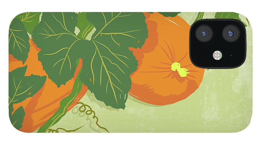 Part Of A Series IPhone 12 Case featuring the digital art Graphic Illustration Of Pumpkins by Don Bishop