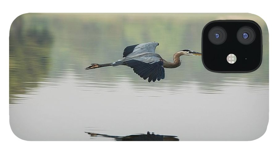 Animal Themes IPhone 12 Case featuring the photograph Great Blue Heron In Flight by Photo By Hannu & Hannele, Kingwood, Tx