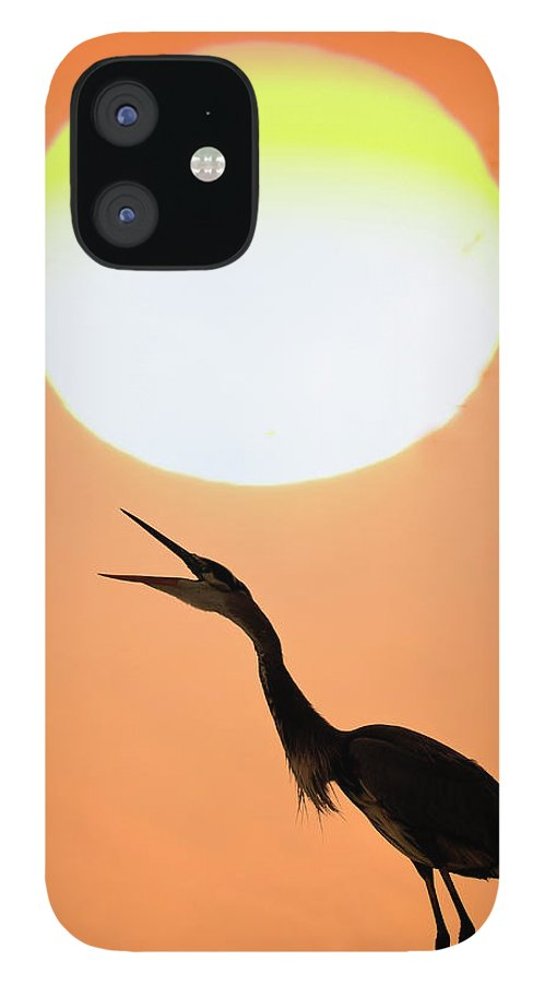 Animal Themes IPhone 12 Case featuring the photograph Great Blue Heron, Screeching, Sunset by Mark Newman