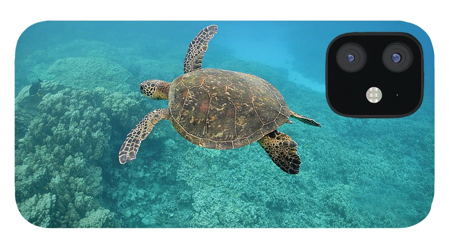 Underwater IPhone 12 Case featuring the photograph Green Sea Turtle, Big Island, Hawaii by Paul Souders