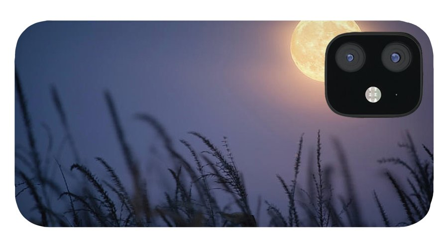 Sky IPhone 12 Case featuring the photograph Harvest Moon by Jimkruger