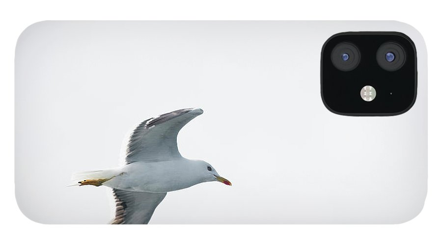 Sweden IPhone 12 Case featuring the photograph Herring Gull In Flight by Magnusson, Roine