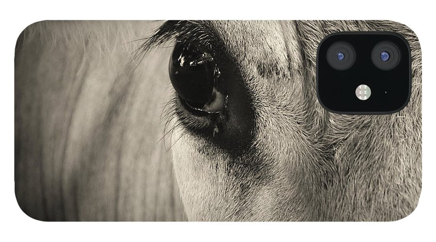 Horse IPhone 12 Case featuring the photograph Horse Eye by Karena Goldfinch