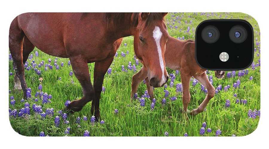 Horse IPhone 12 Case featuring the photograph Horse On Bluebonnet Trail by David Hensley