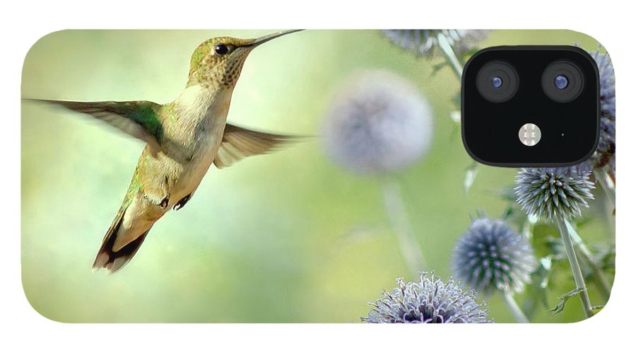 Animal Themes IPhone 12 Case featuring the photograph Hovering Hummingbird by Nancy Rose