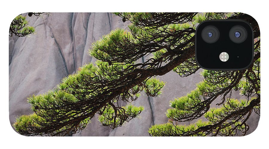 Chinese Culture IPhone 12 Case featuring the photograph Huang Shan Landscape, China by Mint Images/ Art Wolfe