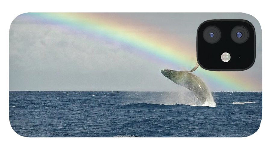 Lahaina iPhone 12 Case featuring the photograph Humpback Whale Rainbow Breach by Share Your Experiences