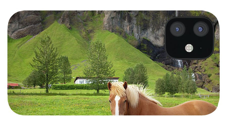 Scenics iPhone 12 Case featuring the photograph Icelandic Horse And Waterfall, Vik by Paul Souders